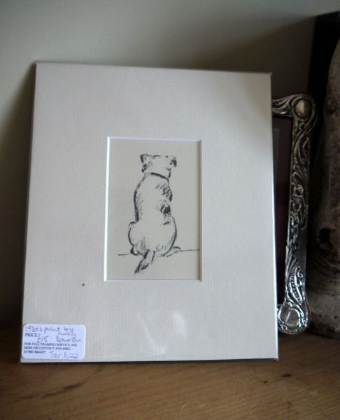 Terrier - outline, rear view- Ter D22  1930's print by Lucy Dawson